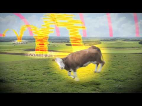 polydor presents 2010/2011 (видео)