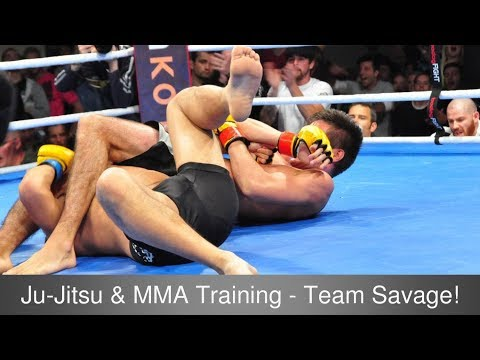 essays on mixed martial arts Mixed martial arts - barbaric or brilliant 5 pages 1280 words november 2014 saved essays save your essays here so you can locate them quickly.
