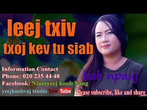 leej txiv txoj kev tu siab 11 /  3 / 2017 (видео)