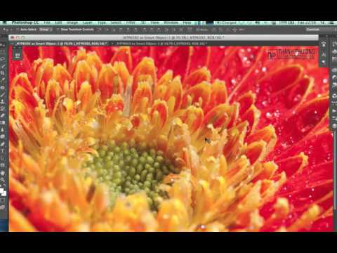 How to remove exif & Resize Images in Photoshop
