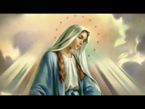 Feast of the Immaculate Conception - 08-Dec-2020 5:30 PM