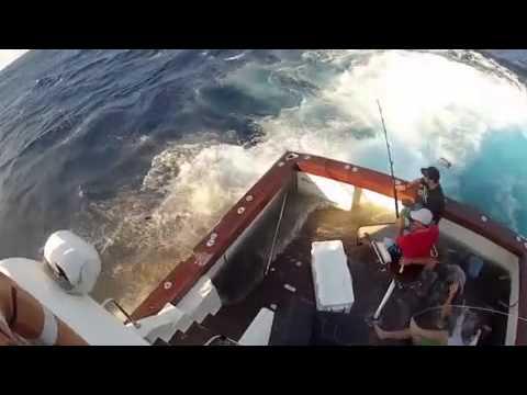 видео рыба в лодку прыгает
