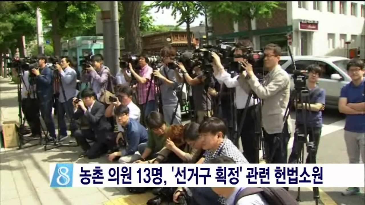 농촌 의원 13명, '선거구 획정' 관련 헌법소원