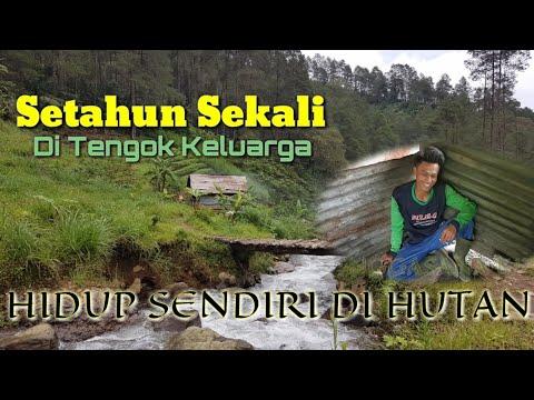 MASIH MUDA HIDUP SENDIRI DI HUTAN Eps. 02, ||ALAMNYA BIKIN JATUH CINTA😍😘||