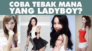 Video Susah Banget Cari Bedanya !! Coba Tebak Mana Yang Ladyboy ? MP3, 3GP, MP4, WEBM, AVI, FLV Mei 2019