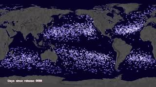 Garbage Patch Visualization Experiment Video Thumbnail