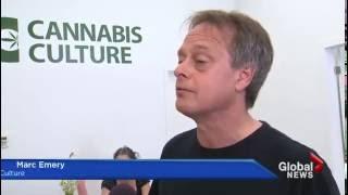 Marijuana dispensary debate deferred again angering advocates GLOBAL NEWS by Pot TV