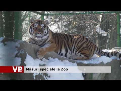 Măsuri speciale la Zoo