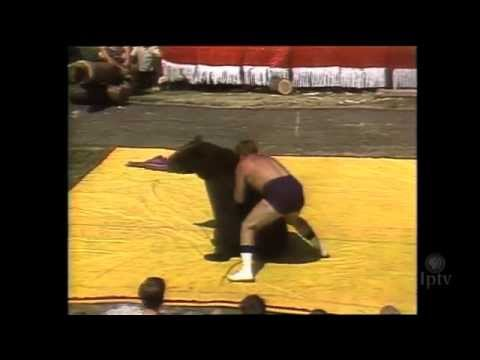 Iowa State Fair: 1972 Bear Wrestling