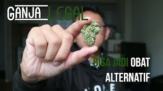 Download Video Ganja Legal di Kanada | Wawancara Eksklusif Sambil Nge-Ganja MP3 3GP MP4
