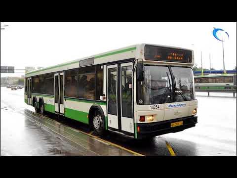 49 автобусов марок МАЗ и Волжанин в скором времени пополнят технопарк Новгородской области