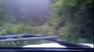 Mahindra THAR in Extreme Offroad 4x4 Action - Jungle Run
