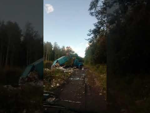Водитель мусоровоза напал с молотком
