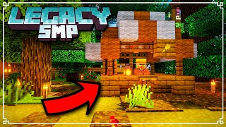 Legacy SMP - Minecraft Market Stall Build Timelapse! (Minecraft 1.16 Survival)