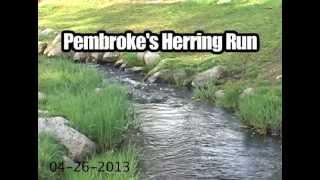 Pembroke's Herring Run