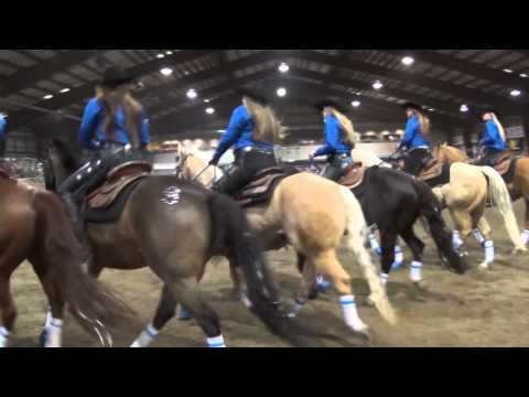 Vancouver Island Coastal Cowgirls Mane Event 2015