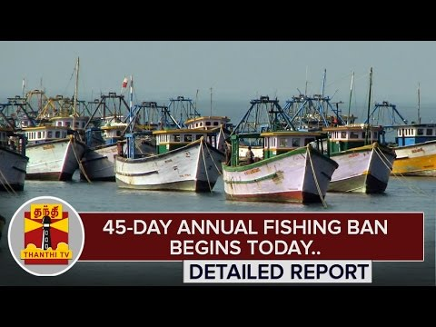 45-Day-Annual-Fishing-Ban-begins-Today-Detailed-Report-Thanthi-TV