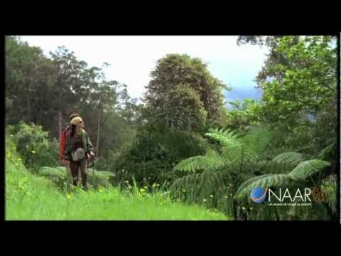 xsus1711 - Video emozionale Tourism Malaysia by Naar.