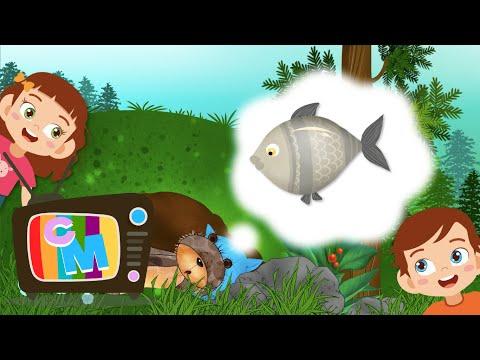 Ursul doarme si viseaza - Clopotelul Magic - cantece pentru copii