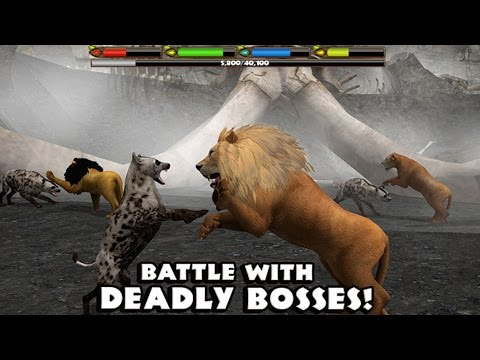 Video ULTIMATE LION SIMULATOR - BATTLE WITH DEADLY BOSSES- Compatible with iPhone, iPad, and iPod touch. download in MP3, 3GP, MP4, WEBM, AVI, FLV January 2017