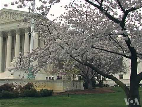 US Supreme Court to Review Immigration Law