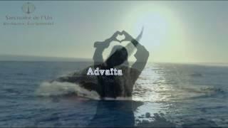 Advaïta/Océan Universel