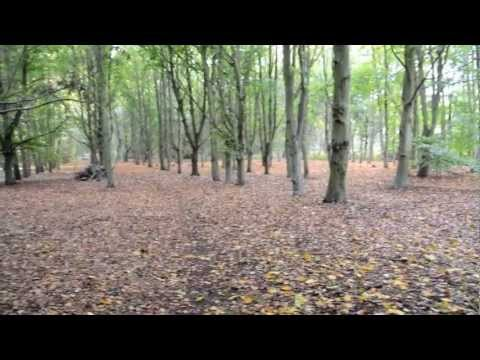 Video ex RAF Martlesham Heath as it is in 2012 download in MP3, 3GP, MP4, WEBM, AVI, FLV January 2017