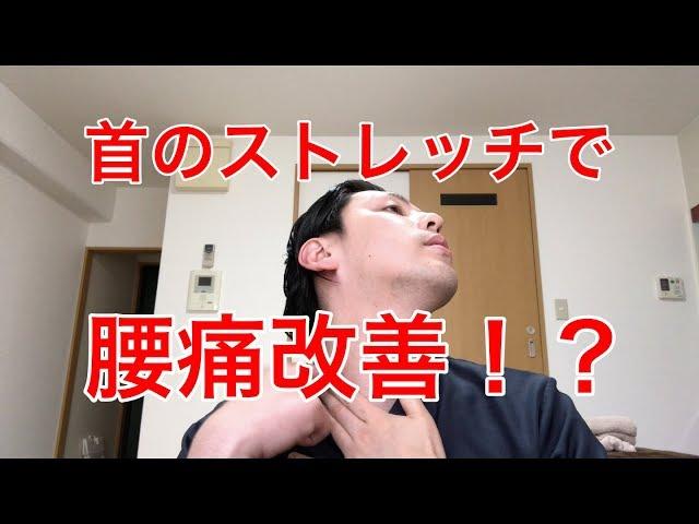 【高槻 腰痛】首のストレッチで腰痛改善!?