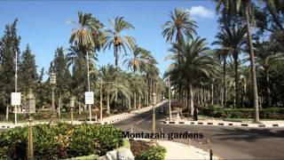 Alexandria Egypt  city pictures gallery : Tour of Alexandria Egypt