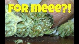 FREE MEDS! - Got Gifted Some Smoke! by Asight4soreeyez