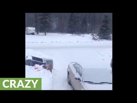 Mies kuvaa metsästä kuuluvia ääniä Kanadassa – Meniköhän yöunet