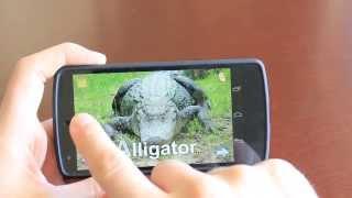 Animal Zoo- Real animal sounds YouTube video