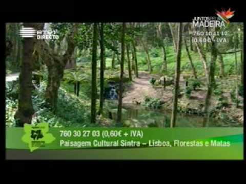 Sintra: Paisagem Cultural - Património da Humanidade