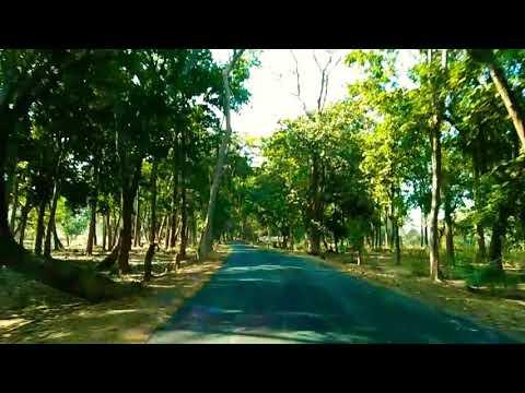 Video Gupteswar temple connecting road... Koraput download in MP3, 3GP, MP4, WEBM, AVI, FLV January 2017