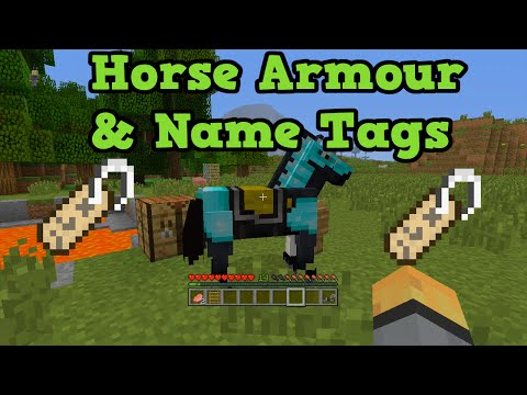 tags - In this video I give a tutorial on how to find horse armour and name tags, as well as how name tags work and what horse armour does. I get asked a lot about