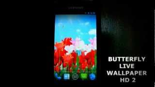 Butterfly Live Wallpaper HD 2 YouTube video