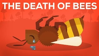 Download Youtube: The Death Of Bees Explained – Parasites, Poison and Humans
