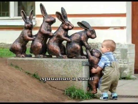 Imagens engraçadas - IMAGENS ENGRAÇADAS (COM LEGENDA)