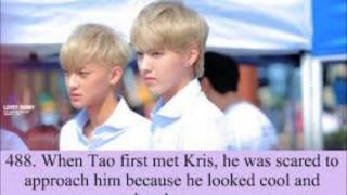Exo Funny Facts