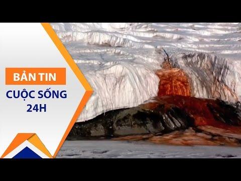Thác máu như phim kinh dị tại Nam Cực | VTC1 - Thời lượng: 83 giây.