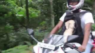 This Man Gave His Baby Goat A Wonderful Ride