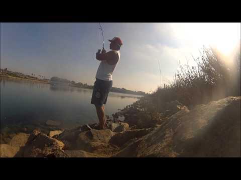 Carlsbad Lagoon Fishing Using Ghostshrimp – Nov 2012