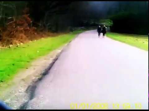 cycling through virginia waters, windsor great park, saville gardens