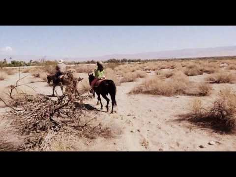 2013 Horseback Riding in Palm Springs, California