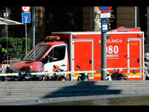Barcelona terror attack: Van drives into crowd
