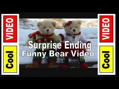 Two Bears At The Door -  Funny Unwanted Christmas Guests -  Funny Bear Video