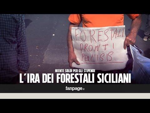 i forestali siciliani a cui non vogliono dare lo stipendio!