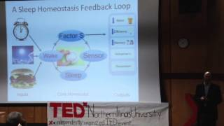 How Genes Will Solve Mystery of Sleep   Ravi Allada   TEDxNorthernIllinoisUniversity
