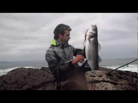 la pesca de  robalo de 6 kilos al primer lance.