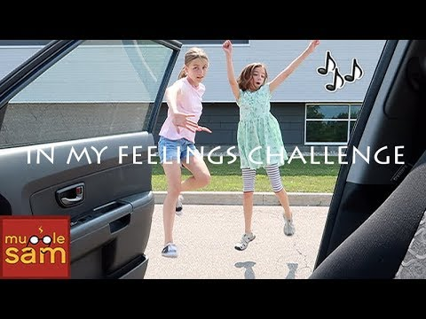 DRAKE - IN MY FEELINGS CHALLENGE | Sophia And Bella Mugglesam
